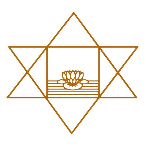 The Illuminate Spiritual Genius of Sri Aurobindo